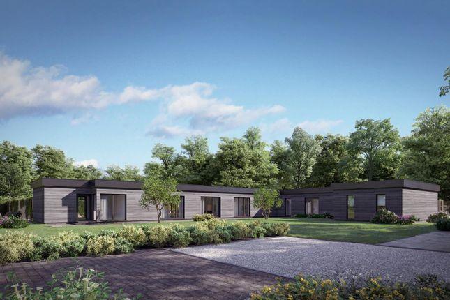 Thumbnail Detached house for sale in Tawney Lane, Stapleford Tawney, Romford