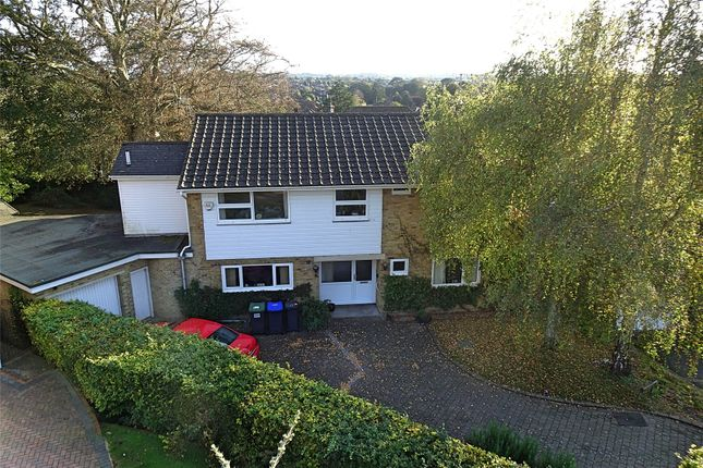Thumbnail Detached house for sale in Longlands Spinney, Worthing