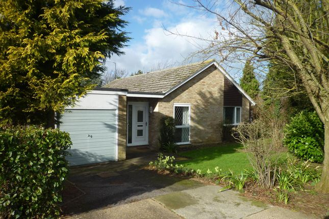 Thumbnail Bungalow to rent in Abbots Close, Ramsey, Huntingdon