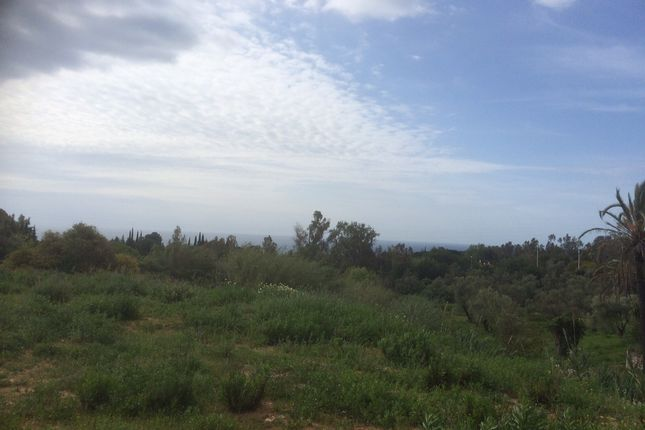 Thumbnail Land for sale in M Paraiso, Marbella, Málaga, Andalusia, Spain
