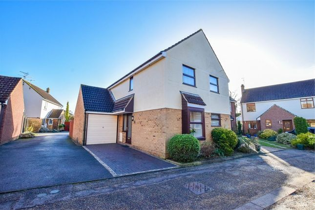 Thumbnail Detached house for sale in Bailey Dale, Stanway, Colchester, Essex