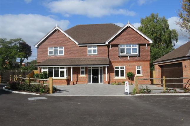 Thumbnail Detached house for sale in Hurstwood Lane, Haywards Heath