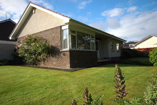 Thumbnail Bungalow to rent in Broadwood Park, Ayr, South Ayrshire