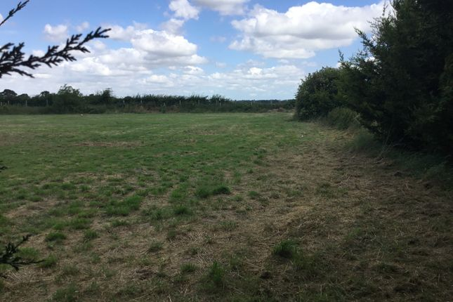Thumbnail Land for sale in Aingers Green Road, Colchester