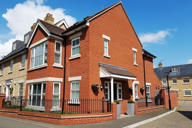 Thumbnail Detached house for sale in Usborne Mews, Writtle, Chelmsford