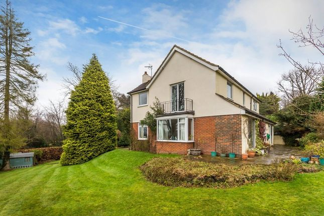 Thumbnail Detached house for sale in Quarry Road, Oxted