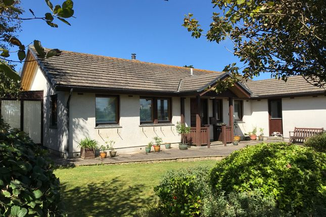 Thumbnail Detached bungalow for sale in Church Lane, Lelant, St. Ives