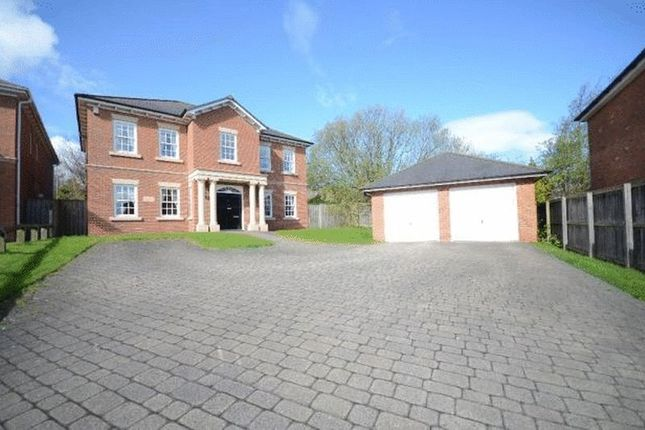 Thumbnail Property for sale in The Meadows, Seaton, Seaham