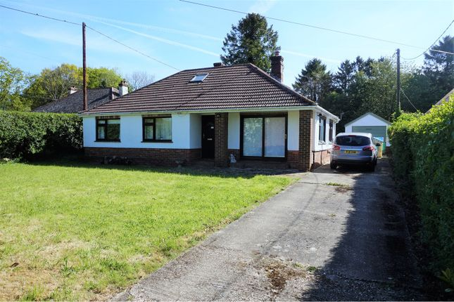 Thumbnail Bungalow for sale in Old Odiham Road, Shalden