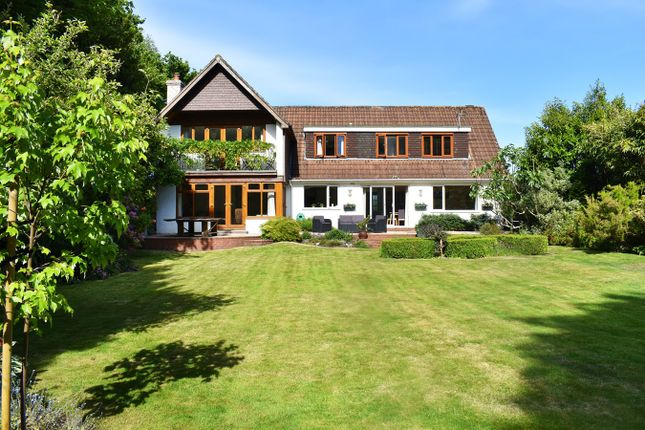 Thumbnail Detached house for sale in Romsey Road, Lyndhurst