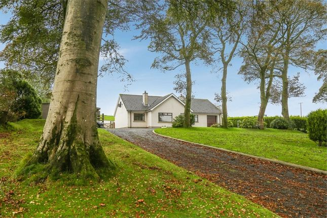 Thumbnail Detached bungalow for sale in Ballyvallagh Road, Larne, County Antrim