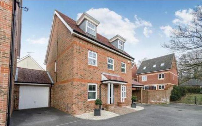 Thumbnail Property to rent in Mescott Meadows, Hedge End, Southampton