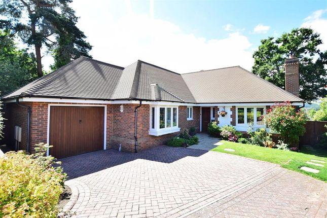 Thumbnail Detached bungalow for sale in Thakeham Copse, Storrington, West Sussex
