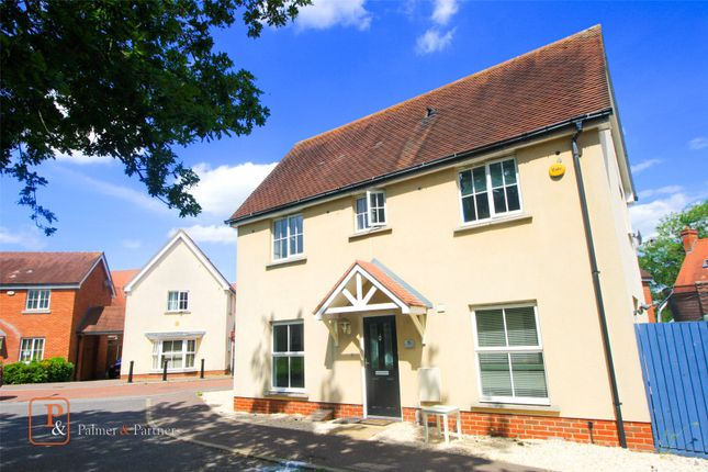 Thumbnail Semi-detached house to rent in Weetmans Drive, Colchester, Essex