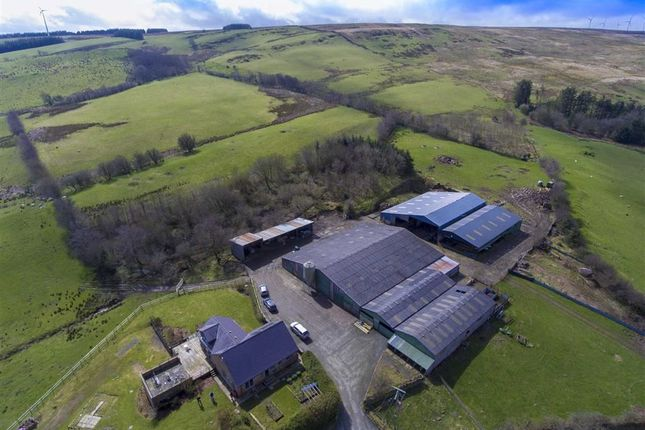 Thumbnail Farm for sale in Cefn Coch, Welshpool