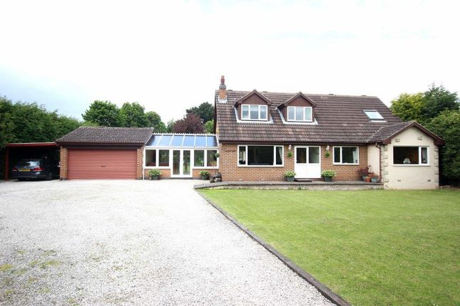 Thumbnail Detached bungalow for sale in Melton Road, Sprotbrough, Doncaster