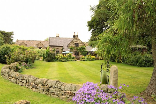 Thumbnail Detached house for sale in Allen Lane, Tansley, Derbyshire