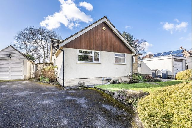 Thumbnail Detached bungalow for sale in Lower Marsh Road, Warminster