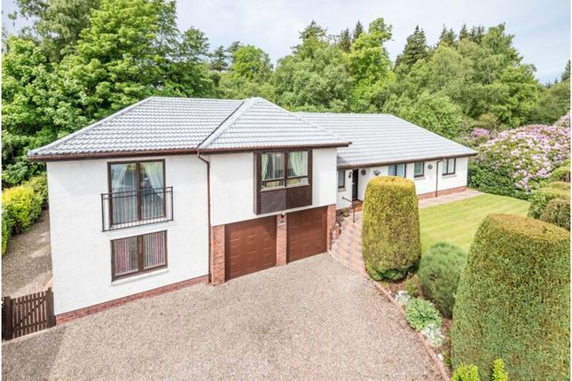Thumbnail Detached house for sale in Waulkmill, Arbroath