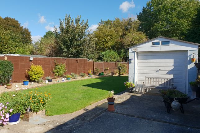 Thumbnail Detached bungalow for sale in Birkdale Close, Worthing