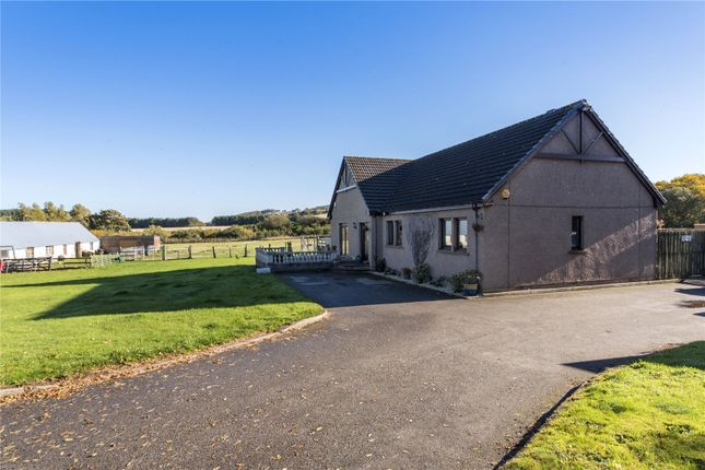 Thumbnail Detached house for sale in Buckie, Moray