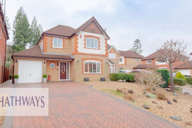 Thumbnail Detached house for sale in Court Meadow, Langstone, Newport