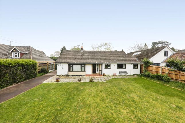 Thumbnail Detached bungalow to rent in Pine Drive, Finchampstead, Wokingham, Berkshire