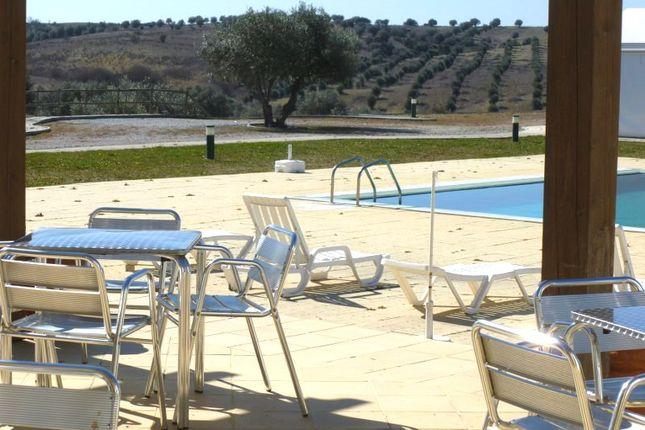Thumbnail Villa for sale in Retirement Home In Alentejo, Évora, Alentejo, Portugal