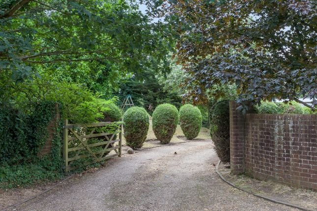 Thumbnail Detached house for sale in Church Hill, Tasburgh, Norwich