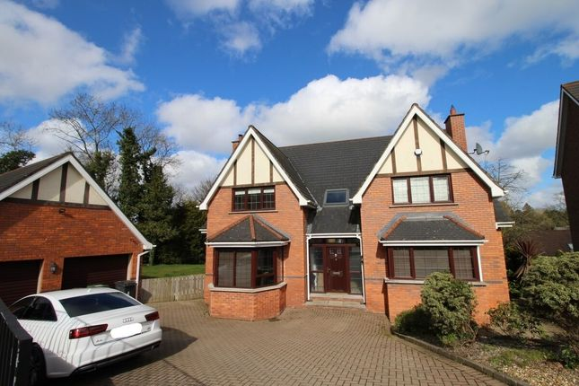 Thumbnail Detached house for sale in Millvale Wood, Hillsborough