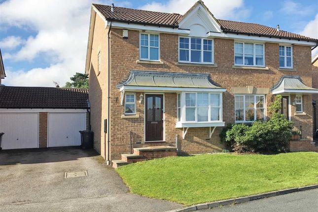 Bluebell Meadow, Harrogate, North Yorkshire HG3