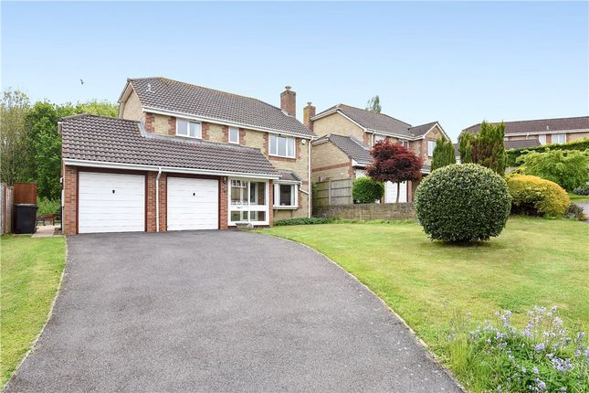 Thumbnail Detached house for sale in Watercombe Heights, Yeovil, Somerset