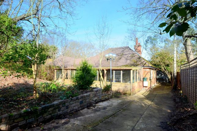 3 bed detached bungalow for sale in Parkside Close, East Horsley KT24