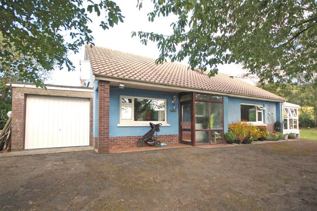 Thumbnail Bungalow for sale in Goginan, Aberystwyth