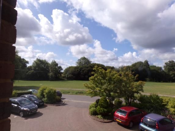 Thumbnail Property for sale in Bickerley Road, Ringwood, Hampshire