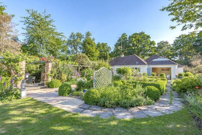 Thumbnail Detached bungalow for sale in Kitsmead Lane, Longcross, Chertsey