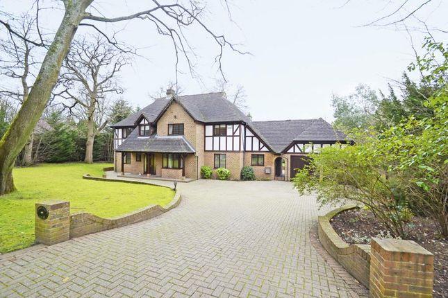 Detached house to rent in Godolphin Road, Weybridge