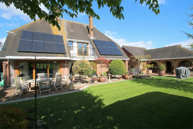 Thumbnail Detached house for sale in The Barn, Ninn Lane, Great Chart, Ashford, Kent