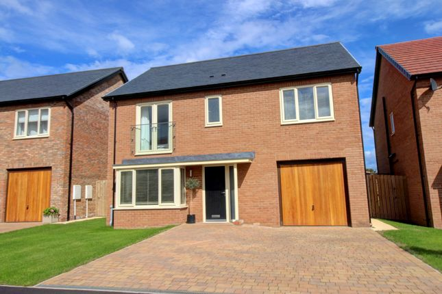 Thumbnail Detached house for sale in Montagu Avenue, Warkworth, Morpeth