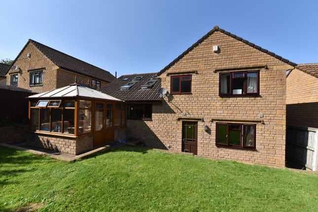 Thumbnail Detached house for sale in Fox Meadows, Crewkerne