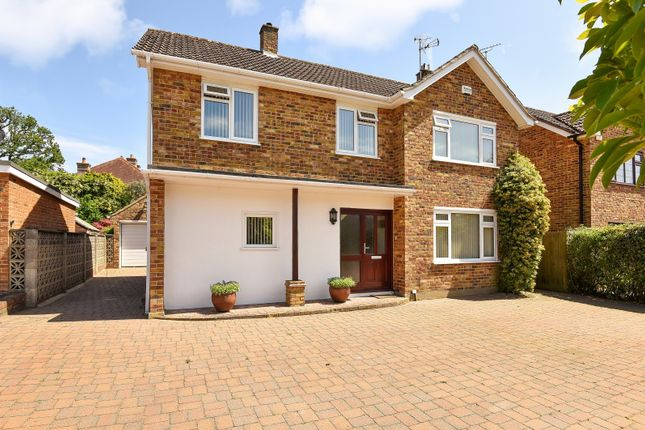 Thumbnail Detached house for sale in Blunts Way, Horsham