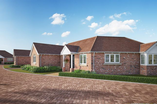 Thumbnail Detached bungalow for sale in 91 King Harold Road, Prettygate, Colchester