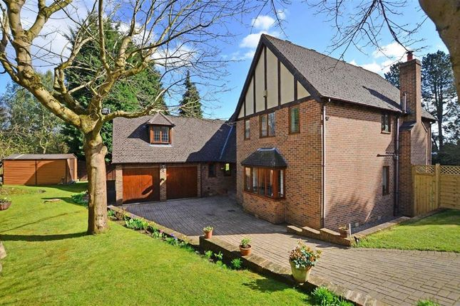 Thumbnail Detached house for sale in Tetney Road, Sheffield, Yorkshire