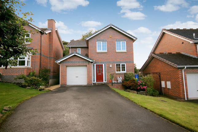 Thumbnail Detached house to rent in Periwood Close, Sheffield