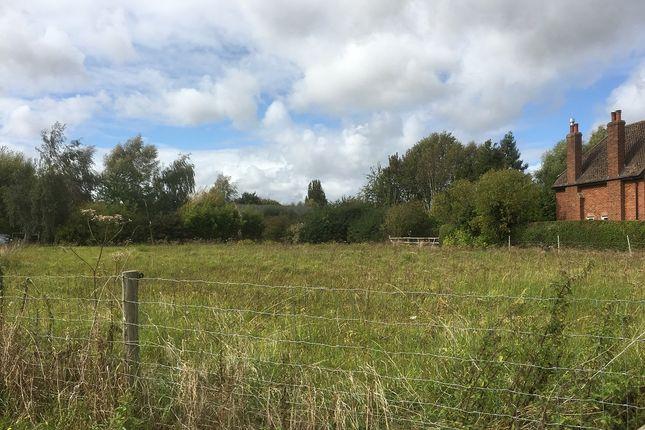 Cow Lane, Longworth OX13