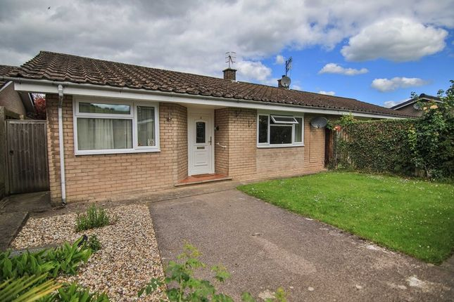 Thumbnail Semi-detached bungalow for sale in Wern Gifford, Pandy, Abergavenny