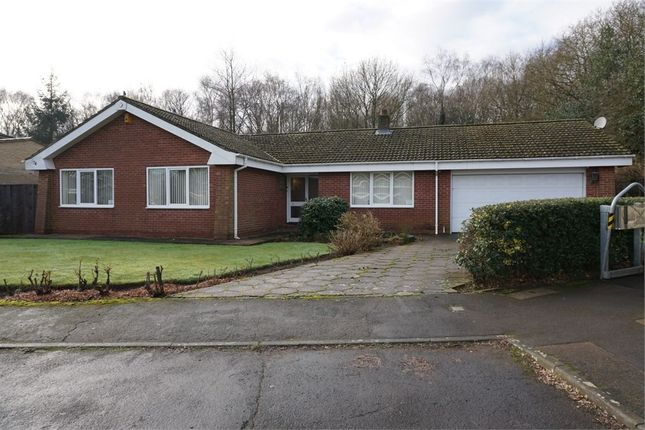 Thumbnail Detached bungalow to rent in Queensway, Moorgate, Rotherham, South Yorkshire
