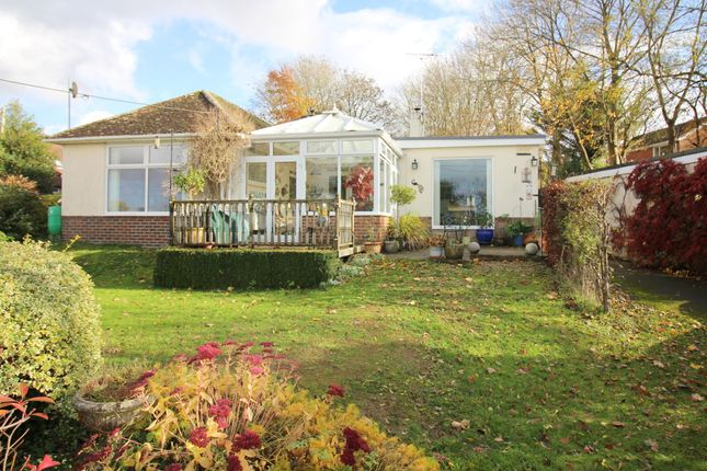 Thumbnail Detached bungalow for sale in Jacklyns Lane, Alresford