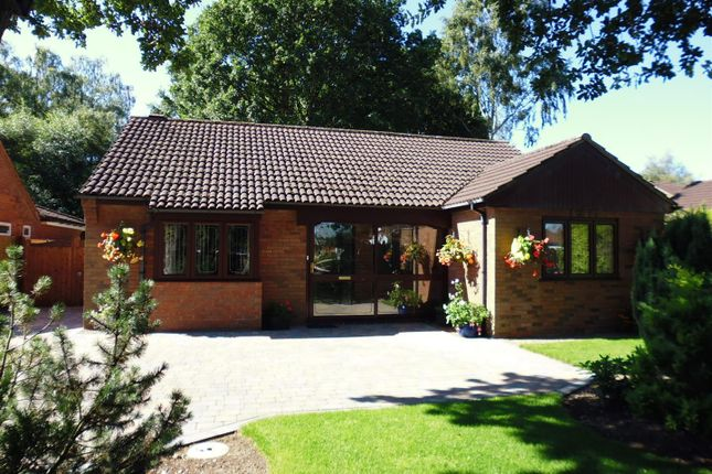 Thumbnail Detached bungalow for sale in Staffordshire Crescent, Lincoln