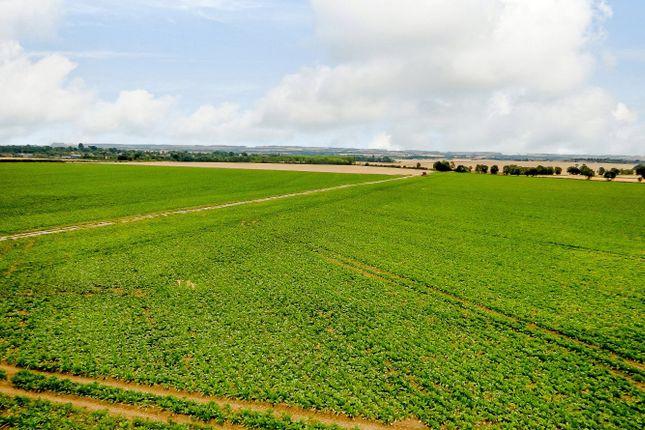 Land for sale in Potton Road, Wrestlingworth, Sandy, Bedfordshire